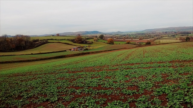 View north, towards Dinmore Hill