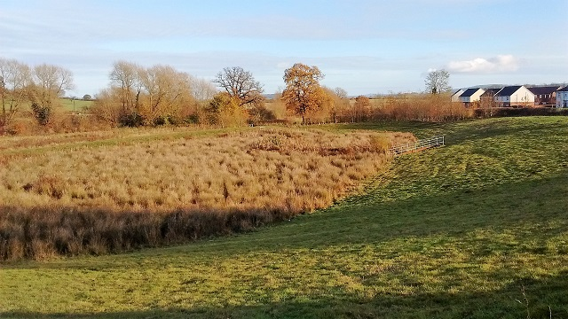 Marshland below The Furlongs
