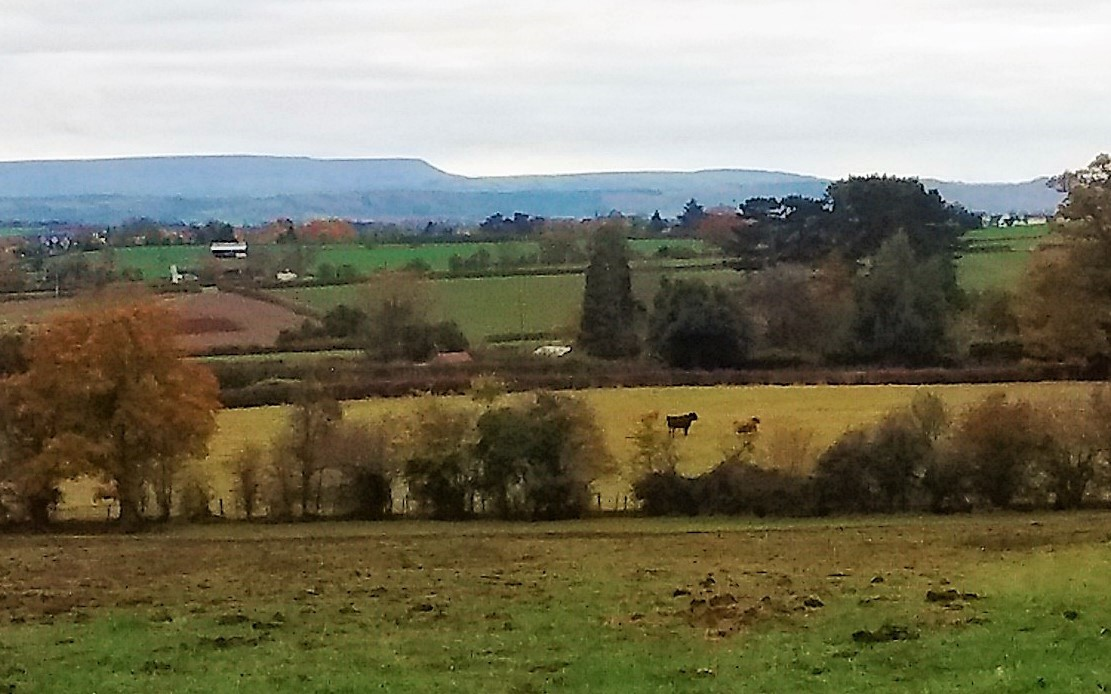View to Hay Bluff from above Highfield House