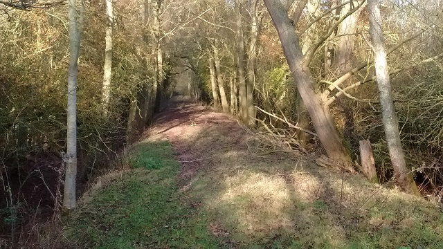 Bridleway HO18 near Shelwick Green