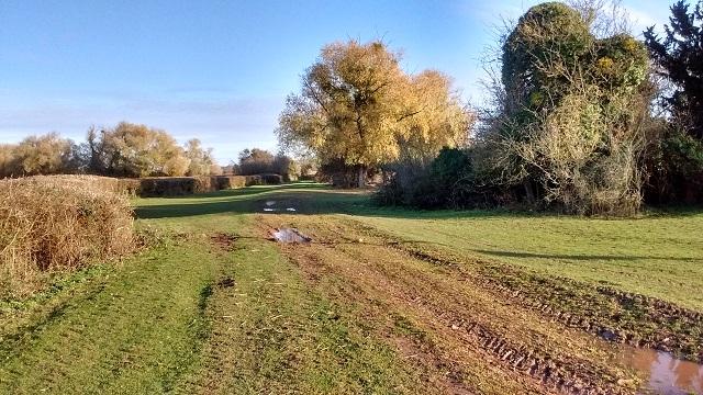 Path HO15 access Land near Shelwick Green Farm