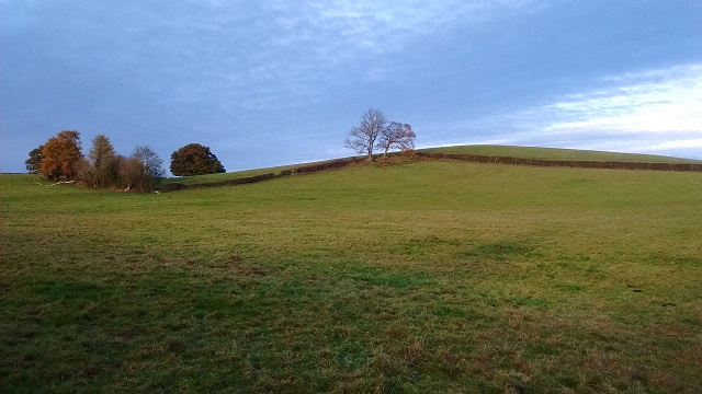Lyde Hill from path HO10 at Shelwick