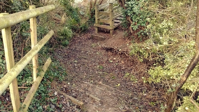 HO1 path cleared of fallen branches and bushes at Ayles Brook