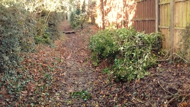 HO8 Path cleared of fallen bushes