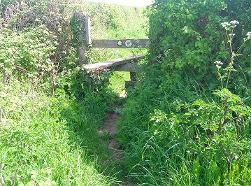HO13-HO14 damaged & difficult stile in need of repair at SO 52055 42622