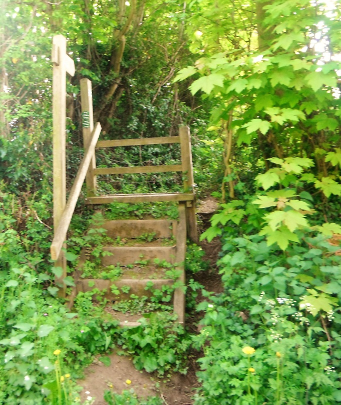 HO14 steps from Shelwick Lane. Light clearance work required