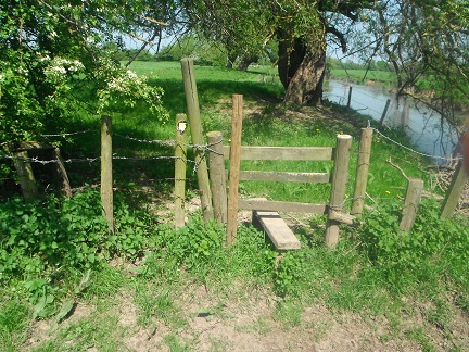 HO17 stile at SO 53323 42353 ideally would be replaced with a more rigid standard stile