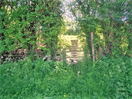 HO17 stile at SO 53294 42292 needs clearing. Stile is leaning and has added top bar making it difficult for shorter walkers.