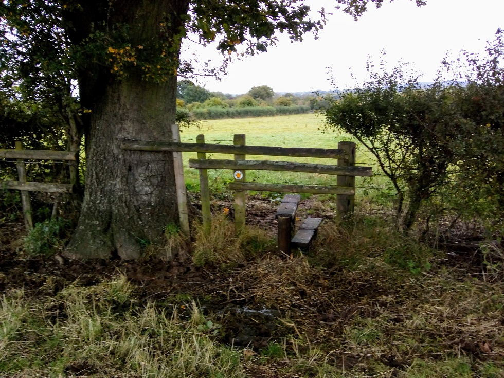 HO13 the parishioner has also requested an upright hand post to ease crossing this stile at SO 522 427