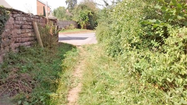 HO8A - nettles hacked down near Attwood Lane _2019-08-21_11.14