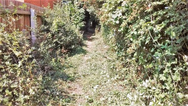HO8 Path clearance 2019-08-26_14.21 Path cleared near Attwood Lane end