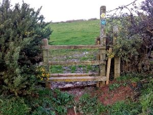 HO1 stile at SO 500 425 –looking towards Hereford Point. All path closure signs had disappeared as at 05.01.20