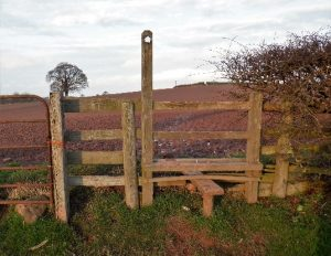 HO4 stile at SO 509 431looking north towards the top stile 29.12.19